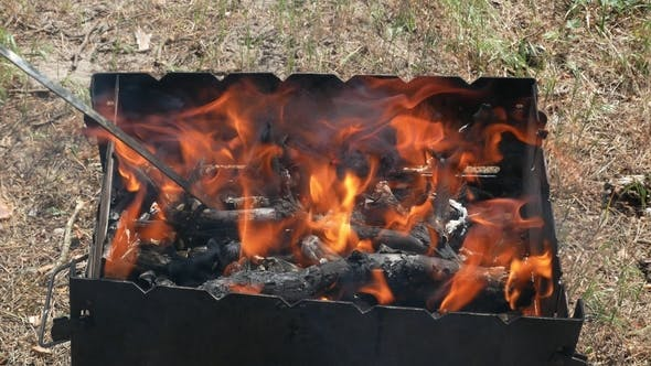 Brazier Barbecue Grill in Forest