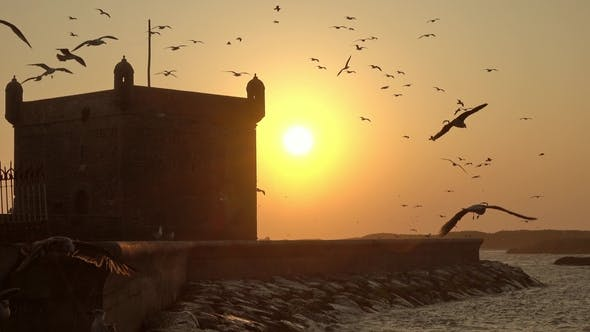 Thumbnail for Essaouira Fort Silhouette at Sunset in Morocco