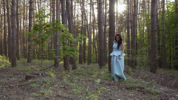 Cover Image for Beautiful Woman in Long Blue Dress Walks in Summer Forest