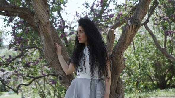Thumbnail for Beautiful Brunette Posing for Camera Near the Tree
