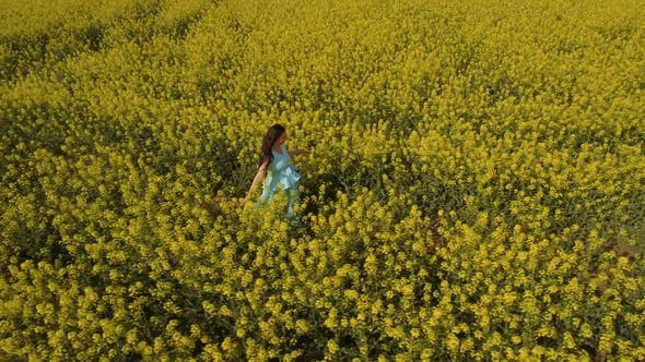 Cover Image for Beautiful Woman in Blue Dress Walks Among Yellow Flowers at the Field