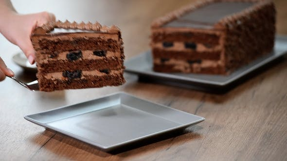 Thumbnail for Putting in a Plate Slice of Chocolate Cake