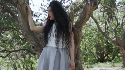 Charming Woman in Dress Posing for Camera Near the Tree