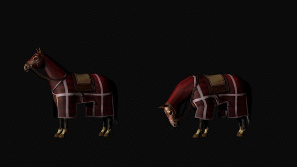 Thumbnail for Medieval War Horse Grazing