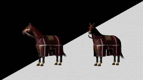 Thumbnail for Medieval War Horse Looking Around