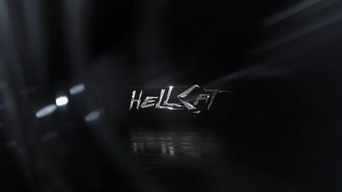 Premium Logo Reveal