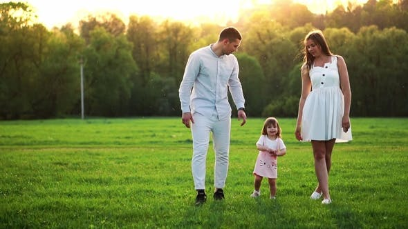 Thumbnail for Happy Young Family with Child Walking on Summer Field