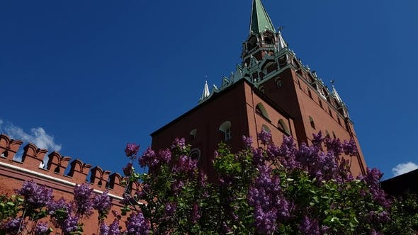 Thumbnail for Lilac and Trinity Tower of Kremlin in Moscow, Russia