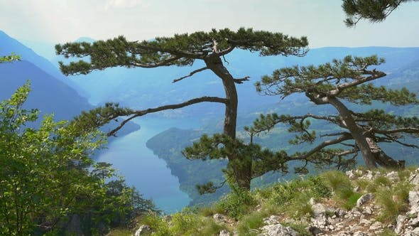 View From Banjska Stena on Drina River in Serbia
