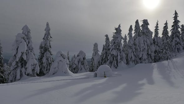 Thumbnail for Snow Igloo in the Winter Carpathian Mountains