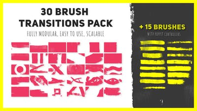30 Brush Transitions Pack