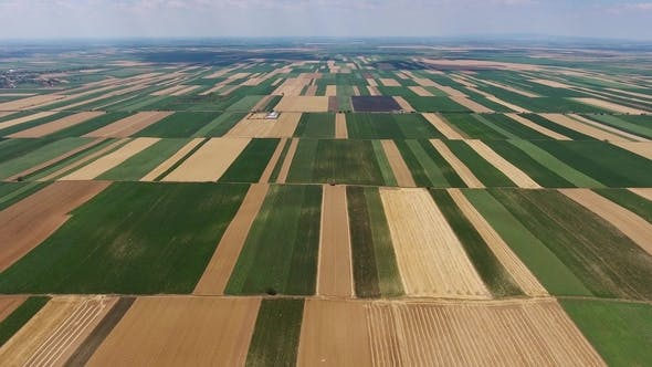 Thumbnail for View of Agriculture Fields in Serbia