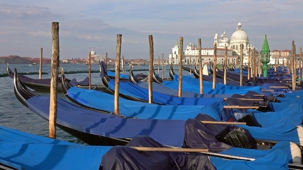 Thumbnail for Traditional Gondolas on Canal Grande in Venice