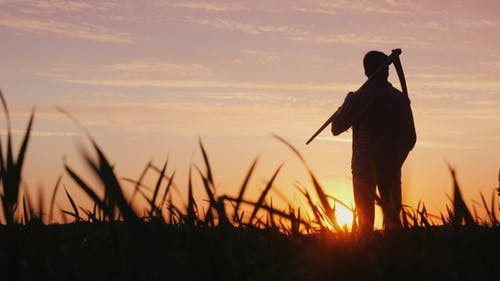 A Young Farmer with a Scythe Standing in a Field at Sunset. Silhouette, Rear View