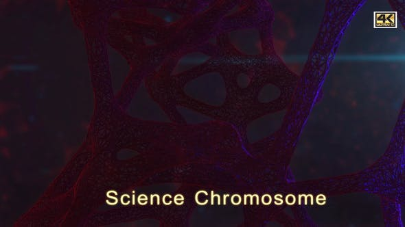 Thumbnail for Science Chromosome  4K