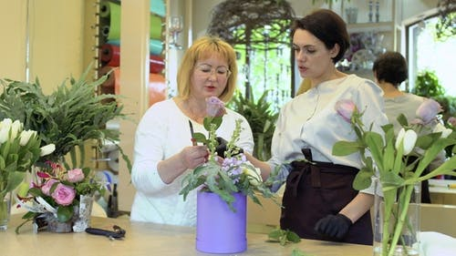 Florist lehren Reife Frau zu schneiden Rosen