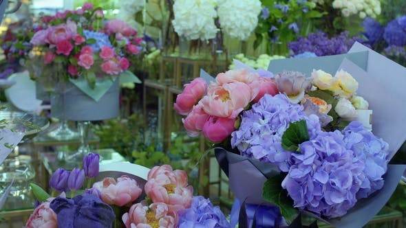 Thumbnail for Variety of Flowers in Flower Shop