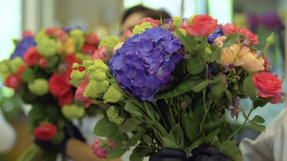Thumbnail for Florist Make Beautiful Bouquet in Flower Shop