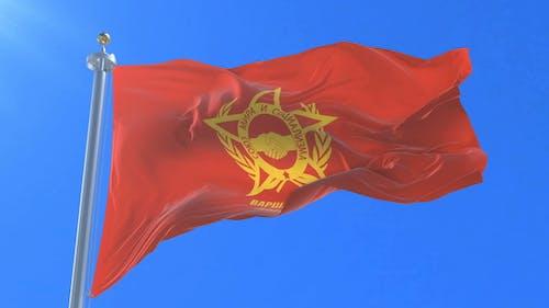 Warsaw Pact flag Waving