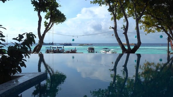 Thumbnail for Silhouettes of Trees Reflected in Pool at Beach