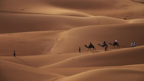 Thumbnail for Camel Caravan with Tourists in Sand Dunes