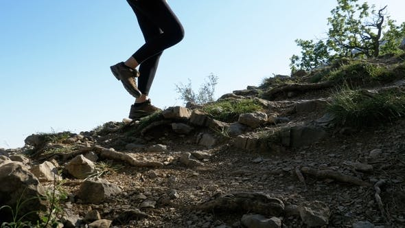Thumbnail for View on Feet of Traveler Woman Hiking Walking on the Top of Cliff in Mountain. Walking on Rocks