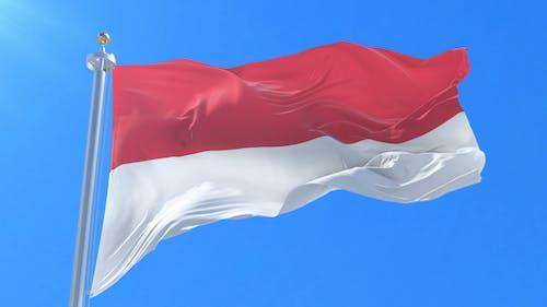 Flag of Monaco Waving