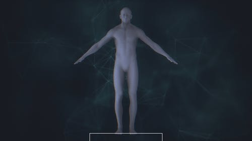 Male Body Scan