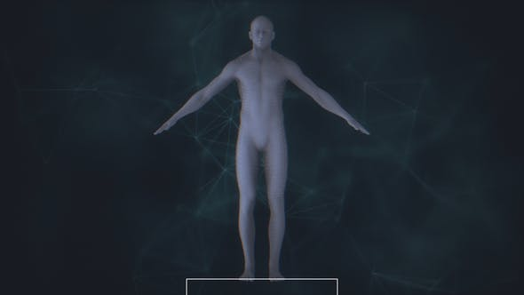 Thumbnail for Male Body Scan