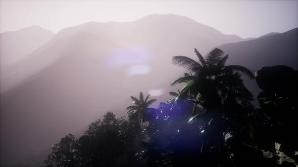 Thumbnail for Mountain and Field Landscape with Palms