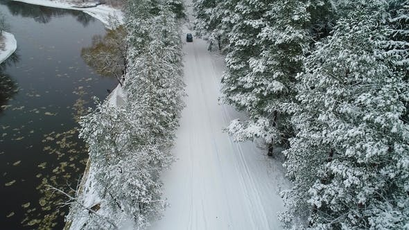 Thumbnail for View of Car Moving in Winter Forest