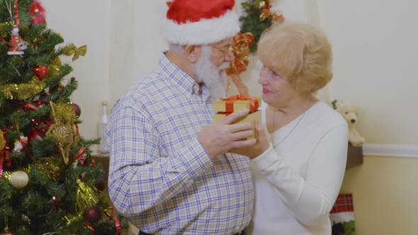 Thumbnail for Mature Woman with Mature Man Hold Christmas Gift in Hands