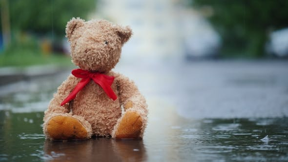 Lonely Teddy Bear Sits in a Puddle in the Rain.  Video