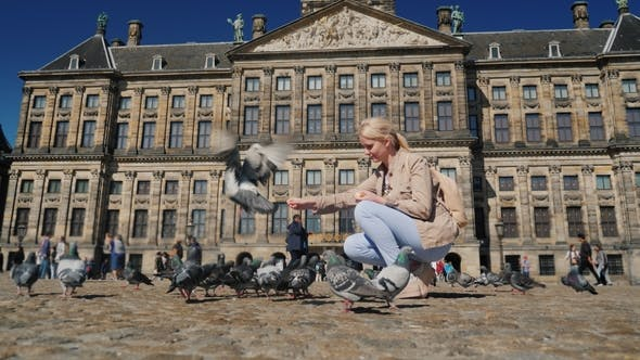 Cover Image for A Young Woman Is Feeding Pigeons in the Center of Amsterdam in Dam Square. Tourism in Europe and the