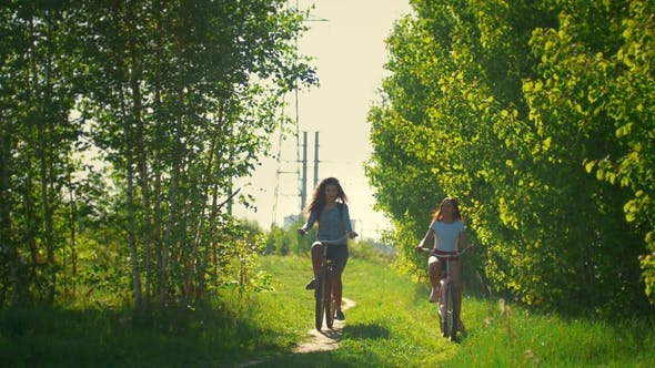Thumbnail for Young Girls Come on Bicycles To the Forest To Walk