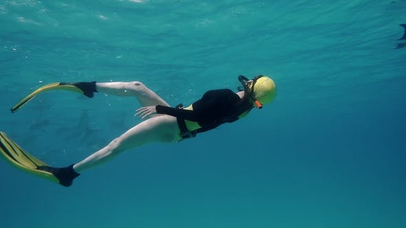 Thumbnail for A Freediver Girl with Dolphins in the Sea