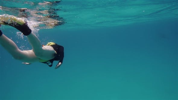 Thumbnail for Freediver Woman Searching for Dolphins in the Sea