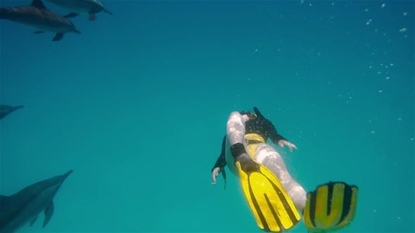 Thumbnail for A Freediver Girl Diving with Free Dolphins