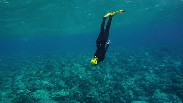 Thumbnail for Free Diving On a Beautiful Coral Reef