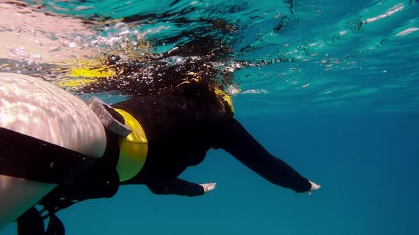 Thumbnail for Woman Free Diving Underwater