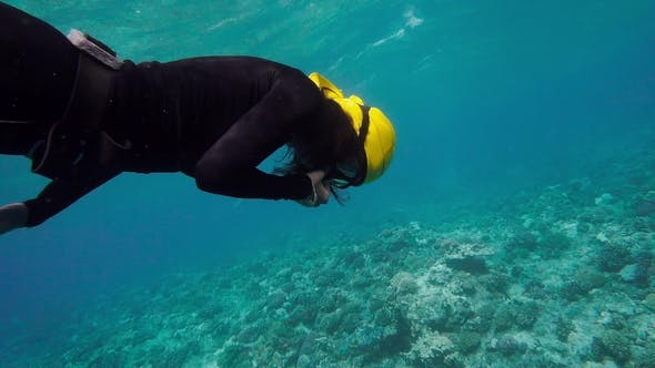 Thumbnail for Woman in Black Suit Free Diving On a Coral Reef