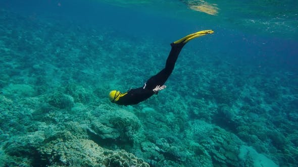Thumbnail for Woman Free Diving On a Coral Reef