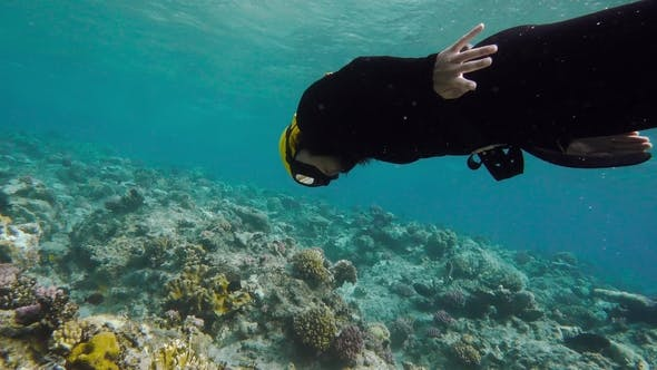 Thumbnail for A Girl Free Diving on a Coral Reef