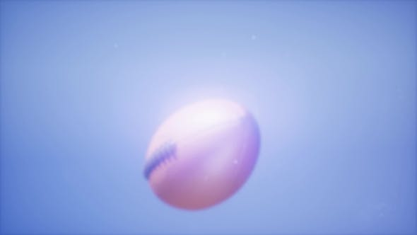 Thumbnail for Super  Flying Football