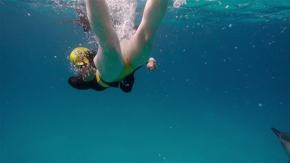 Thumbnail for A Freediver Girl and Dolphins in Sea