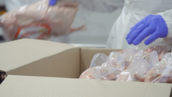 Thumbnail for Worker Packs Packages with Raw Duck Meat into a Card Box for a Sale