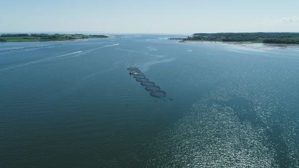 Thumbnail for Fishing Net s in Jutland