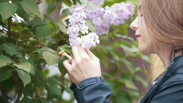 Thumbnail for Blooming Lilac, Girl Enjoying the Smell of Flowers