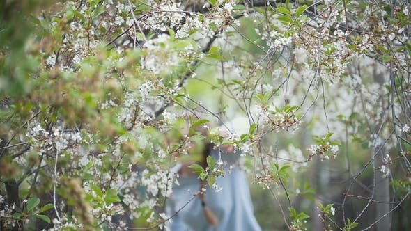Thumbnail for Girl Runs Making Her Way Through Cherry Branches, Summer Day,
