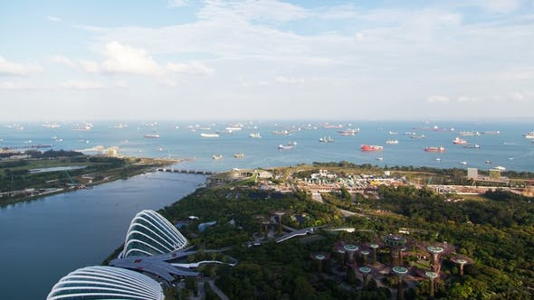 Thumbnail for Singapore Gardens By the Bay with Ships in the Harbor